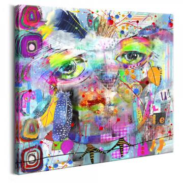 Tablou - Colourful Owl