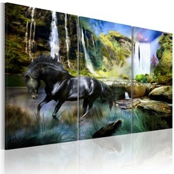 Tablou - Horse on the sky-blue waterfall background