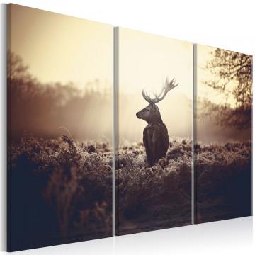 Tablou - Lurking Deer I