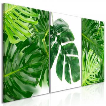 Tablou - Palm Leaves (3 Parts)