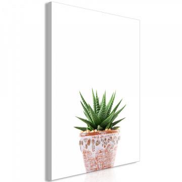 Tablou - Succulents In Pot (1 Part) Vertical