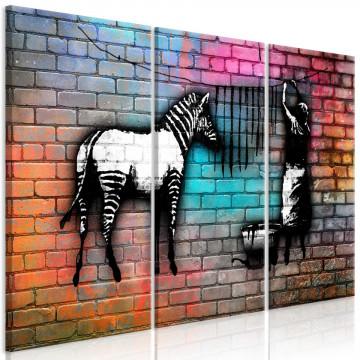 Tablou - Washing Zebra - Colourful Brick (3 Parts)