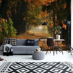 Autumnal Road Photo Wallpaper Mural