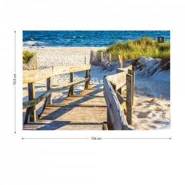 Beach Path Coastal Sand Dunes Sea Photo Wallpaper Wall Mural
