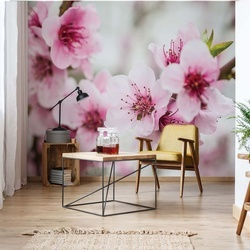 Cherry Blossom Flowers Photo Wallpaper Wall Mural