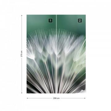 Dandelion Flower Nature Photo Wallpaper Wall Mural