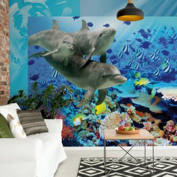 Dolphins Tropical Fish Photo Wallpaper Wall Mural