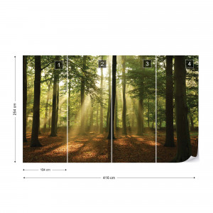 Enchanted Forest Photo Wallpaper Wall Mural