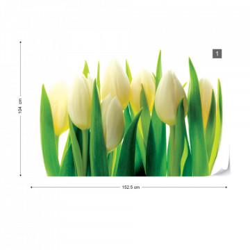 Flowers Tulips Photo Wallpaper Wall Mural