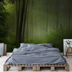 Forest Morning Photo Wallpaper Mural