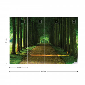 Forest Path Photo Wallpaper Wall Mural