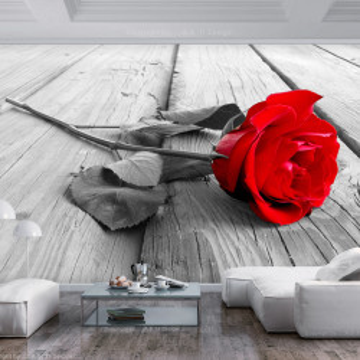 Fototapet autoadeziv - Abandoned Rose