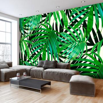 Fototapet autoadeziv - Tropical Leaves