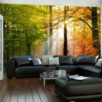 Fototapet - Beautiful autumn