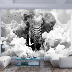 Fototapet - Elephant in the Clouds (Black and White)