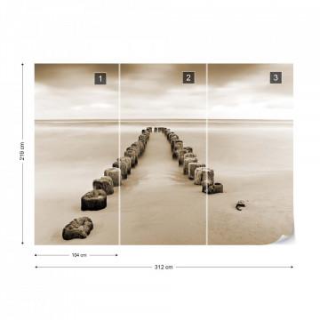 Fototapet - Mare de Liniște – Sepia