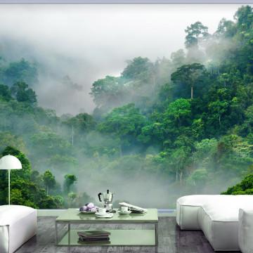 Fototapet - Morning Fog
