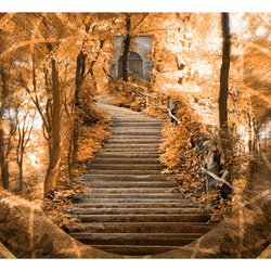 Fototapet - Stairs to paradise