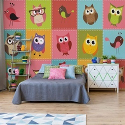 Kid'S Cartoon Owls Photo Wallpaper Wall Mural