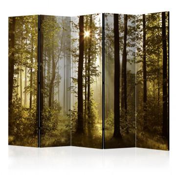 Paravan - Forest: Morning Sunlight II [Room Dividers]