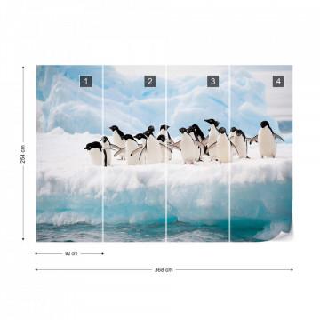 Penguins Photo Wallpaper Wall Mural