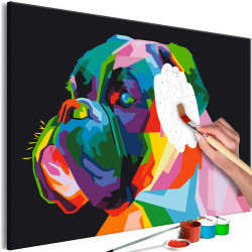 Pictatul pentru recreere - Colourful Boxer