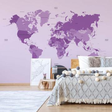 Political World Map Purple