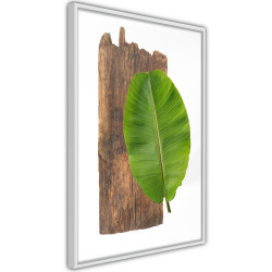 Poster - Forest Nature