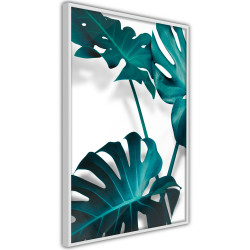 Poster - Turquoise Monstera II