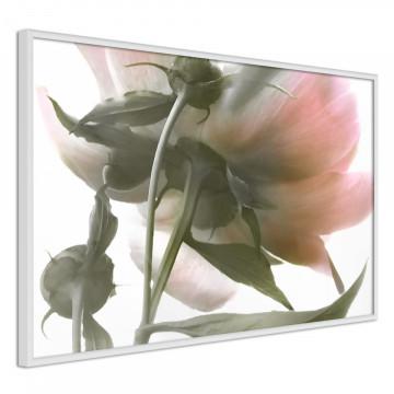 Poster - Under the Flower
