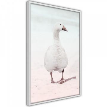 Poster - Walking Goose