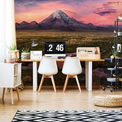 Sajama Photo Wallpaper Mural
