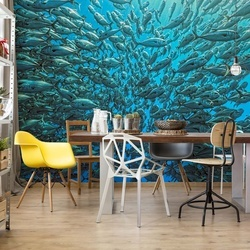 Splitted School Of Jackfish Photo Wallpaper Mural