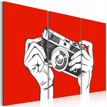 Tablou - A photographer