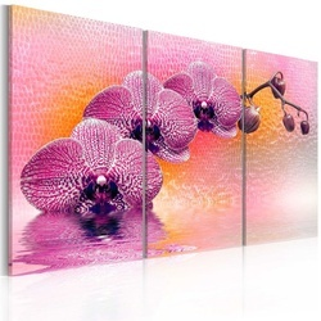 Tablou - A rare specimen - triptych