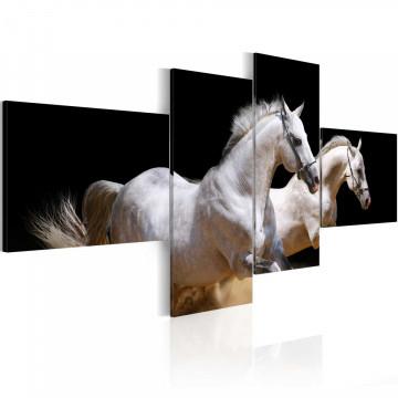 Tablou - Animal world- white horses galloping