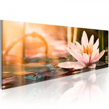 Tablou - Beautiful Lotus