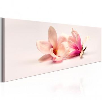 Tablou - Beautiful Magnolias