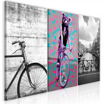 Tablou - Bikes (Collection)