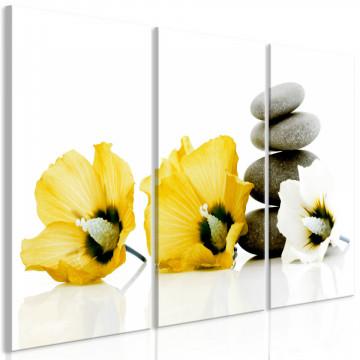 Tablou - Calm Mallow (3 Parts) Yellow
