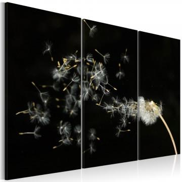 Tablou - Dandelions- the transience