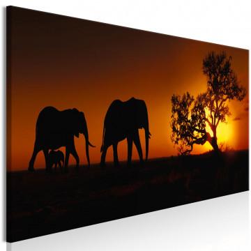 Tablou - Elephant Family (Orange)