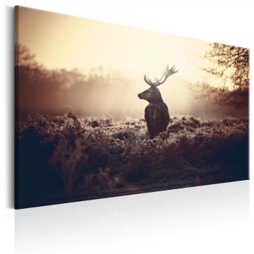 Tablou - Lurking Deer