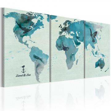 Tablou - Ornithological map of the World