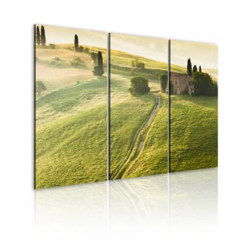 Tablou - Under the Tuscan Sun