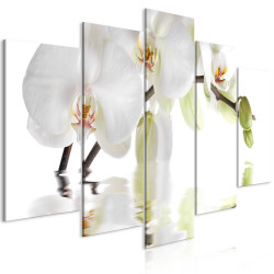 Tablou - Wonderful Orchid (5 Parts) Wide