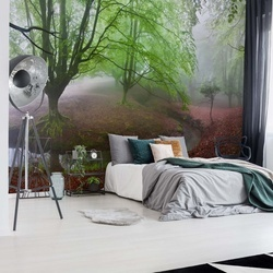 The Forest Maravillador Photo Wallpaper Mural
