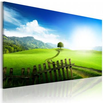 Tablou - Path of destination