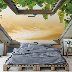 Vines Countryside Skylight Window View Photo Wallpaper Wall Mural