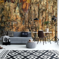 Bark Photo Wallpaper Mural